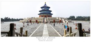 Beijing - Temple of Heaven - Andrew Croucher Photography.jpg